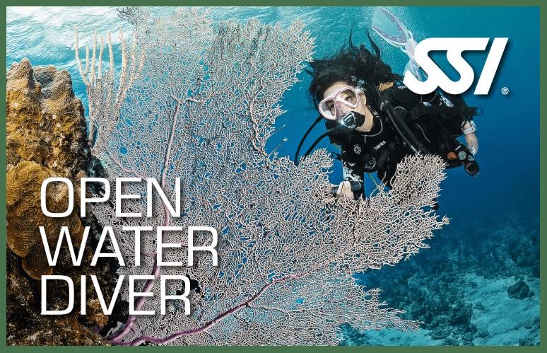 CORSO SUBACQUEO OPEN WATER DIVER